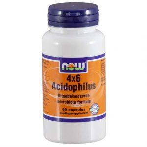 4x6-acidophilus-1