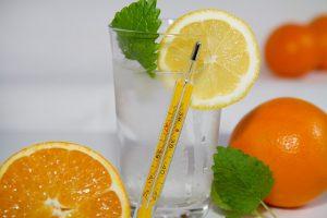 Vitamine C fruit 300x200 - De Top 10 Meest Populaire Voedingssupplementen En Hun Eigenschappen!