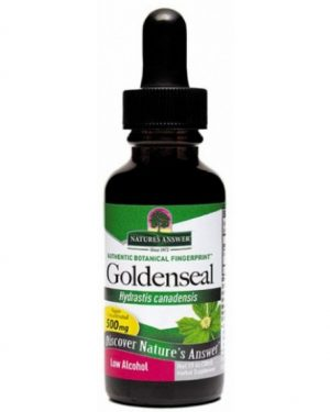 goldenseal root natures answer 300x375 - Golden Seal Root - Low Alcohol (30 ml) - Nature's Answer
