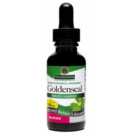 goldenseal root natures answer - Golden Seal Root - Low Alcohol (30 ml) - Nature's Answer