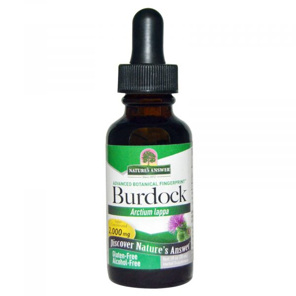 NTA 00584 3 600x600 - Burdock, Alcohol-Free, 2000 mg (30 ml) - Nature's Answer