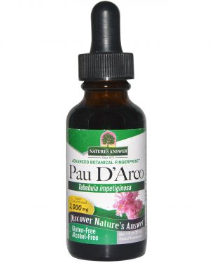 NTA 00652 3 300x375 - Pau D' Arco, Alcohol-Free, 2000 mg (30 ml) - Nature's Answer