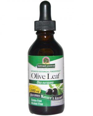 NTA 00653 3 300x375 - Olive Leaf, Alcohol-Free, 1500 mg (60 ml) - Nature's Answer