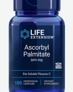 ascorbyl palmitate 500 mg 100 veggie capsules   life extension 300x375 - Ascorbyl Palmitate 500 mg (100 Veggie Capsules) - Life Extension