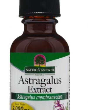 astragalus alcohol free 1000 mg 30 ml nature s answer1 300x375 - Astragalus, Alcohol-Free, 1000 mg (30 ml) - Nature's Answer