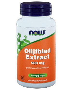 image 12 300x375 - NOW Foods Olijfblad Extract 500 mg