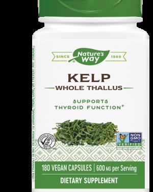 kelp 600 mg 180 capsules   nature s way1 300x375 - Kelp 600 mg (180 Capsules) - Nature's Way