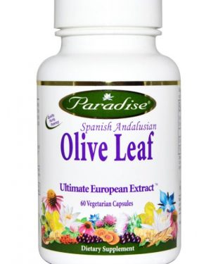 paradise herbs spanish andalusian olive leaf 60 veggie caps 300x375 - Spaans Andalusisch Olijfblad (60 Veggie Caps) - Paradise Herbs
