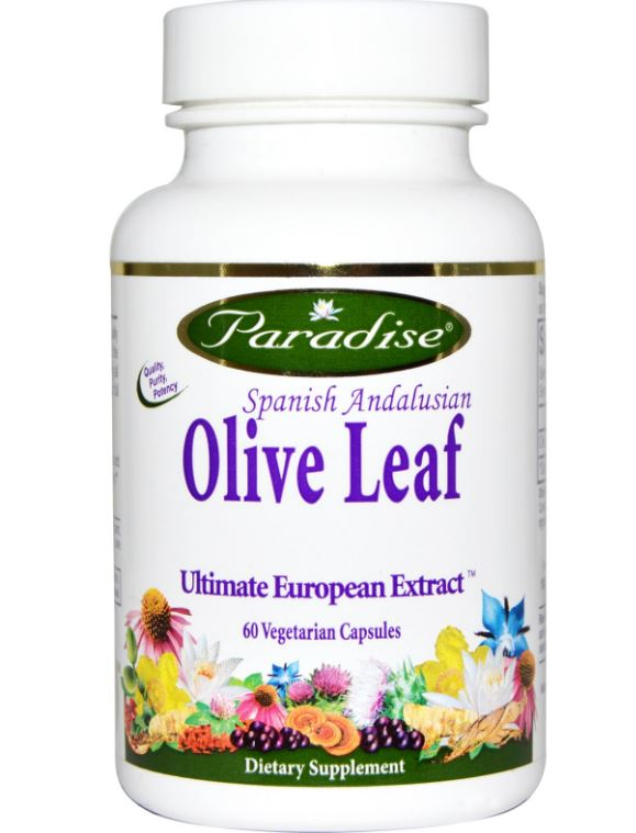 paradise herbs spanish andalusian olive leaf 60 veggie caps - Spaans Andalusisch Olijfblad (60 Veggie Caps) - Paradise Herbs